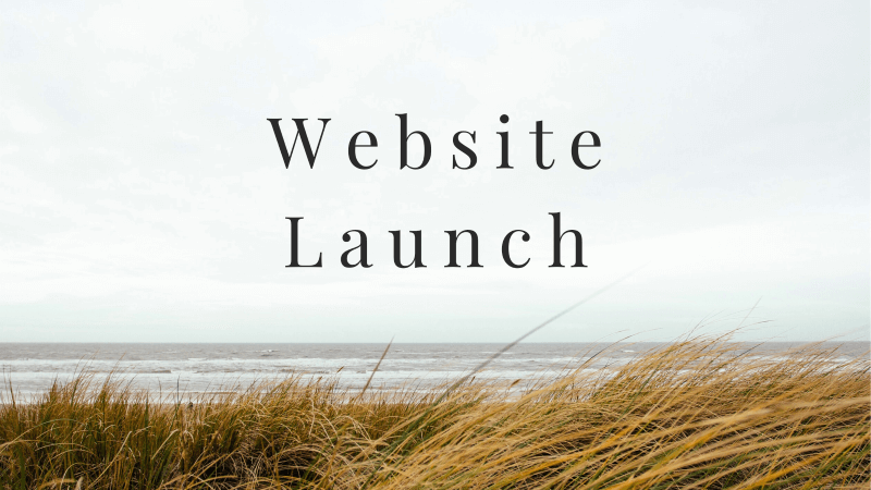 website launch banner
